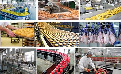 Gıda Üretimi